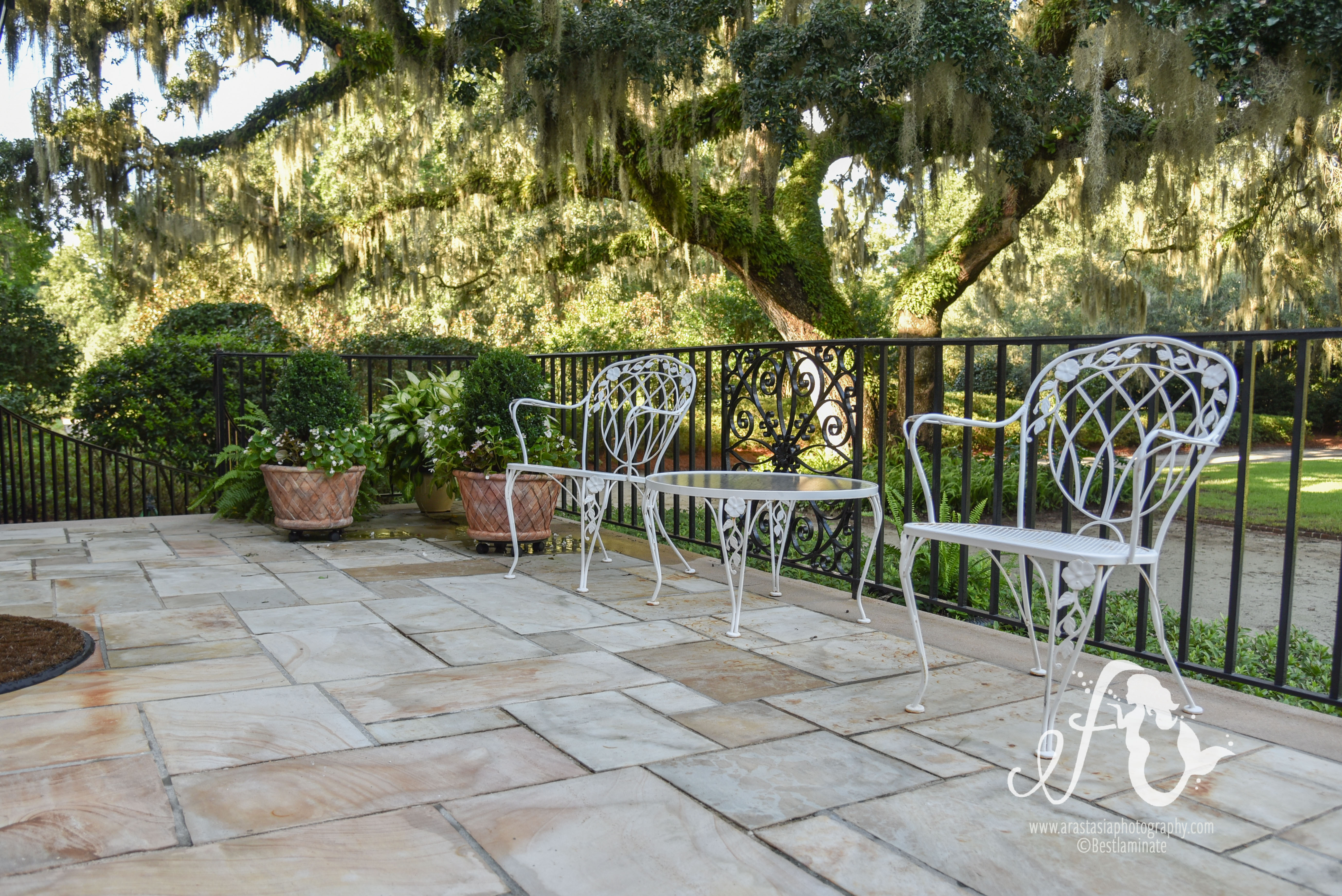 The Historic Beauty of a Southern Plantation Home on southern furniture ideas, southern apartment ideas, southern decorating ideas, southern birthday ideas, southern landscape design ideas, southern picnic ideas, southern gardening ideas, southern porches, southern office ideas, southern christmas ideas, southern vacation ideas, southern bedroom ideas, southern bbq ideas, southern cooking ideas, southern carpet ideas, southern nursery ideas, southern garden ideas,