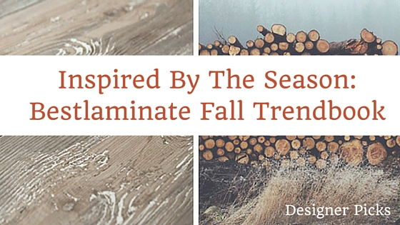 Get Inspired by the Season: Fall Trendbook
