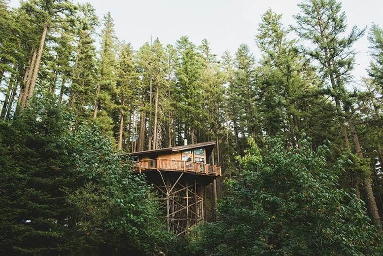 Timber Stilts Home Renovation