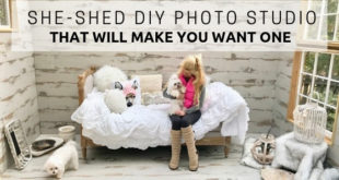 She-Shed DIY Photo Studio