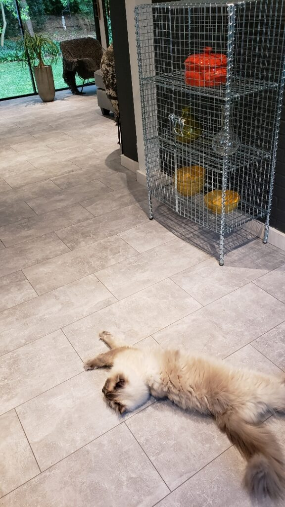 modern sunroom flooring